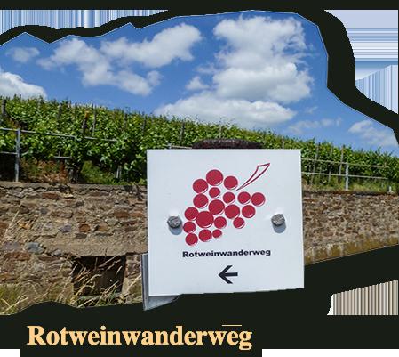 Rotweinwanderweg, wandern und geniessen in den Weinbergen des Ahrtals.